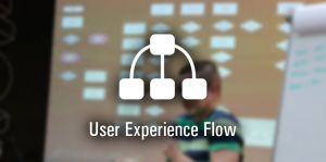 User Experience Flow